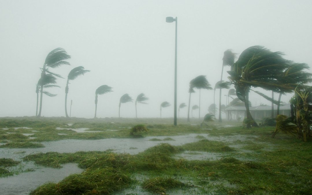 6 Ways to Protect Your Home from a Hurricane